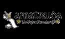 amatruda-logo